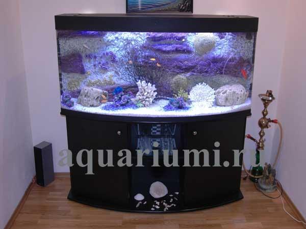 Задний внешний фон для аквариума